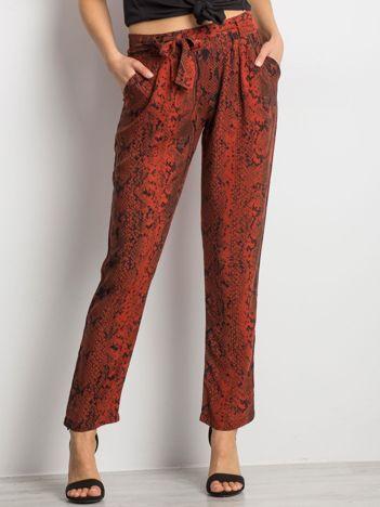 Brązowe spodnie Severity