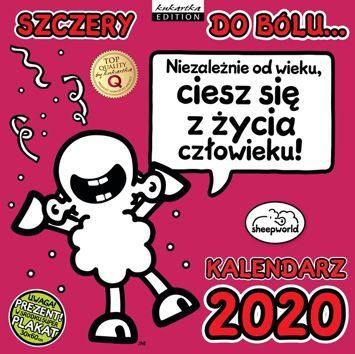KUKARTKA Kalendarz ścienny na rok 2020 SHEEPWORLD SZCZERY + plakat 60x30 cm