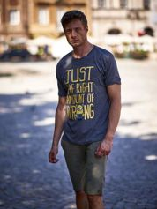 Ciemnoszary t-shirt męski MINIONKI