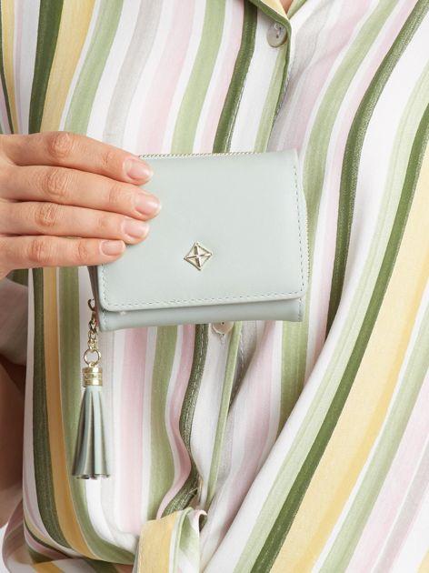 Jasnozielony portfel