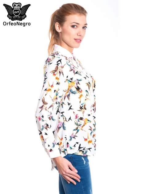 Koszula w kolibry z różowym kołnierzykiem, mankietami i listwą                                  zdj.                                  2