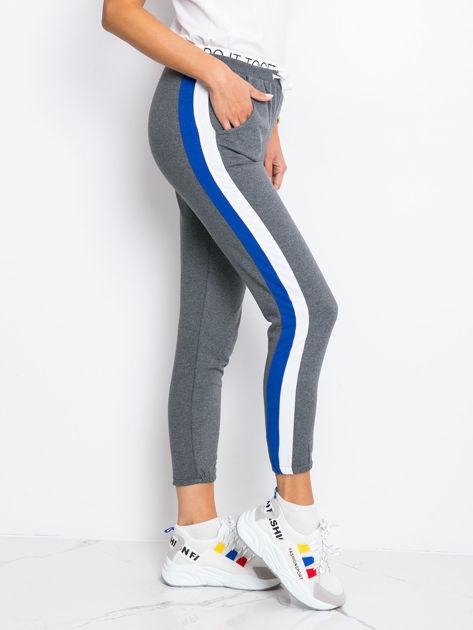 Szaro-niebieskie spodnie Hidden                              zdj.                              1