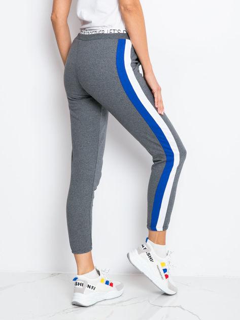 Szaro-niebieskie spodnie Hidden                              zdj.                              2
