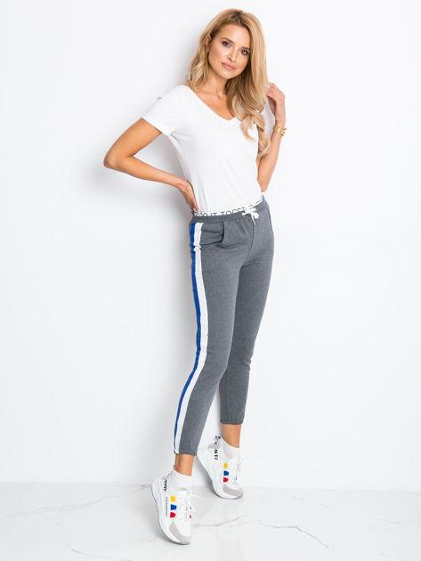Szaro-niebieskie spodnie Hidden                              zdj.                              5