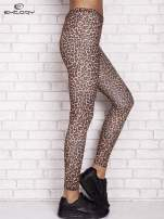 Brązowe legginsy animal print                                  zdj.                                  3