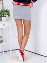 Spódnica jasnoszara z lampasami tricolor                                  zdj.                                  2