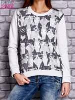 Szara bluza z motywem kotów                                  zdj.                                  1